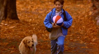 "In ""Air Bud"", Once-sad 12-year-old Josh Framm (Kevin Zegers) finds fall fun with his new best friend, the stray Golden Retriever he names Buddy."