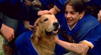 Spoiler warning: everything ends well for the dog (Buddy, played by either Rush, Zak, Chase or Chance) and his owner (Kevin Zegers).