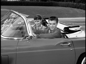 What girl of the 1950s wouldn't want to drive around in a convertible with Tim Considine? Certainly not Roberta Shore.