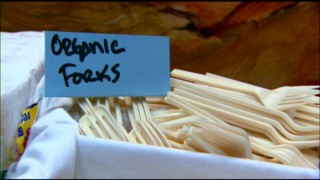 "Biodegradable organic forks were one of several ways that the environmental production embraced ""Green Filmmaking."""