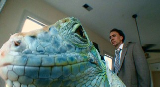 Nic Cage looks shiftily at a hallucinatory iguana that has stolen the foreground from him.