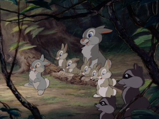 You can tell Thumper's siblings aren't important by their identical appearance.