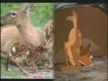 DisneyPedia: Bambi's Forest Friends