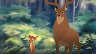 Bambi and his old man observe the forest.