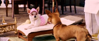 Sunbathing in shades and pink, Chloe (voiced by Drew Barrymore) must endure romantic advances from assistant landscaper and fellow Chihuahua Papi.