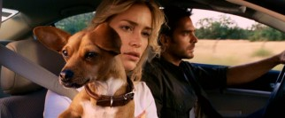 Leading the charge to find Chloe are smitten Chihuahua Papi (voiced by George Lopez), Rachel (Piper Perabo), and Sam (Manolo Cordana).