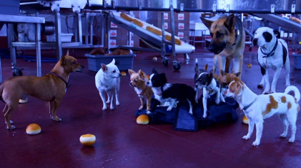 """Beverly Hills Chihuahua 2"" concludes with most of its canine cast heroically gathered at a bread factory doubling as a criminal hideout."