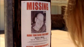"Walter's disappearance is noted in the missing signs posted to telephone poles and the like in ""Grilled."""