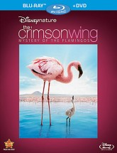 Disneynature: The Crimson Wing - Mystery of the Flamingos Blu-ray + DVD Combo cover art - click to buy from Amazon.com