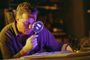 Have no fear -- Dr. Gil Grissom (William Petersen) and his magnifying glass are on the case.