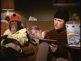 While Steve's girlfriend Jen sleeps, he enjoys a night of Chicken Lickin' and TV research with Raffles the chimp.