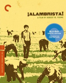 ¡Alambrista! (1977): Criterion Collection Blu-ray cover art -- click for larger view and to buy from Amazon.com