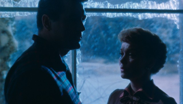 "Ron Kirby (Rock Hudson) and Cary Scott (Jane Wyman) have a heart-to-heart backlit by a beautiful ice blue in ""All That Heaven Allows."""