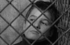 The 400 Blows: The Criterion Collection Blu-ray + DVD Review