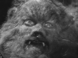 Get a good, clear look at the Beast (Jean Marais), whom Blu-ray allows you to see in the highest resolution thus far available in your home.