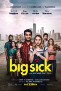 The Big Sick (2017) movie poster