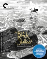The Black Stallion: The Criterion Collection Blu-ray Disc cover art -- click to buy from Amazon.com