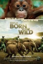 Born to Be Wild (2011) movie poster