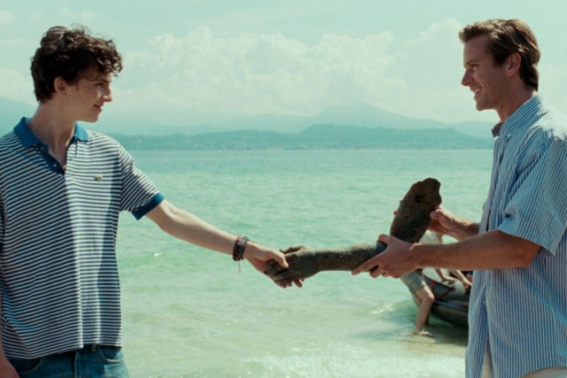 Elio (Timothée Chalamet) and Oliver (Armie Hammer) share a moment as they both hold the arm of an old sculpture washed up and discovered.
