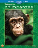 Disneynature's Chimpanzee: Blu-ray + DVD cover art -- click to buy from Amazon.com