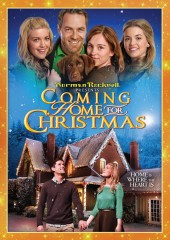 Coming Home for Christmas (2013) DVD cover art -- click to buy from Amazon.com
