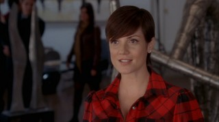Zoe McLellan's character, Lisa George, becomes more relevant in Season Two. Unfortunately, that new relevance comes at the price of an unnatural story arc.