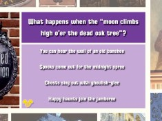 This Haunted Mansion question represents the difficulty of the Advanced level in the Wonderful World of Disneyland Trivia Game.