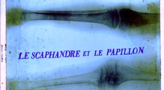 The French title of the film (Le Scaphandre et le Papillon) appears over an X-ray. It is directly translated into English: The Diving Bell and the Butterfly.