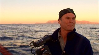 "Cameraman Simon Smith tries to press his button at the ideal moment for capturing a slow motion shark feast in ""Earth Diaries."""