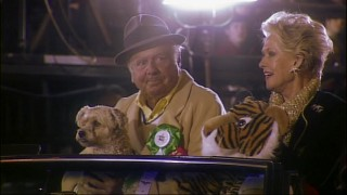 """Christmas in Tinseltown"" is celebrated in grand fashion with the Hollywood Christmas Parade offering glimpses of celebrities like Dick Van Patten, seen here with his dog, his wife, and her tiger."