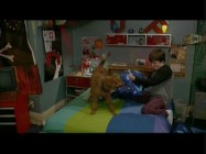 In the alternate ending, we see the Pillow Wall destroyed as a boy and his dog get ready for bed.