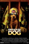 Firehouse Dog (2007) movie poster - click to buy