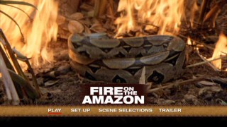 The titular Amazonian fire may not feature much in the film, but it does enliven the DVD's main menu montage.