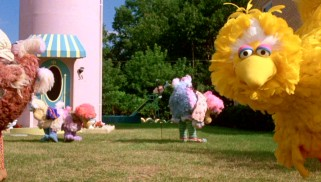 Big Bird shoots viewers a knowing look while his scatterbrained new family, the Dodos, scout their lawn for worms.