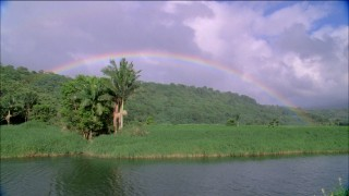 Three music videos treat us to rainbows and other beautiful Hawaiian imagery.