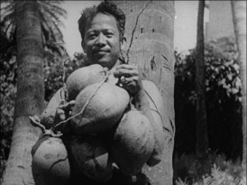 "A man proudly displays a collection of one of Hawaii's local fruits in Castle Films' ""The World Parade: Hawaii."""