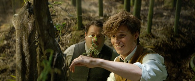 Newt Scamander (Eddie Redmayne) and Jacob Kowalski (Dan Fogler) stop to admire a fantastic beast known as a Bowtruckle.
