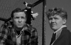 On the Waterfront: The Criterion Collection Blu-ray Review
