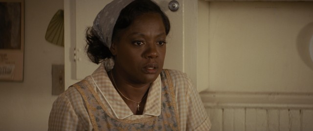 Viola Davis won the Academy Award for Best Supporting Actress for her focal turn as Rose Maxson.