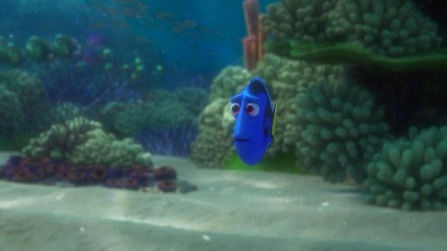 "The amnesiac blue tang Dory goes searching for her parents and gets lost in Disney/Pixar's ""Finding Dory."""