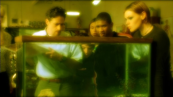 Professor Edward Furlong (Jon Stewart) shows his students (including Usher and Clea DuVall) a newly-discovered species found on school premises in The Faculty's yellow-tinted Blu-ray menu montage.