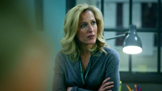 "The British television drama ""The Fall"" stars Gillian Anderson as driven Detective Superintendent Stella Gibson."