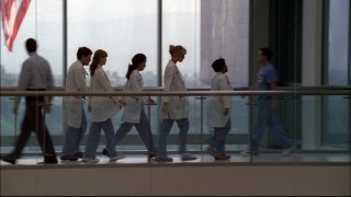 Bailey leads her interns through one of Seattle Grace's more scenic spots.