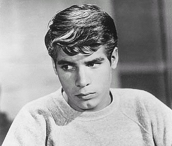 "Don Grady on the popular and long-running sitcom ""My Three Sons."""