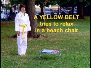 A yellow belt using his karate skills on everyday tasks is one of the recurring sketches featured on Demetri Martin's show.