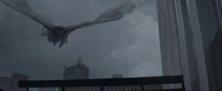 M.U.T.O.s have one clear advantage over Godzilla: they can fly!