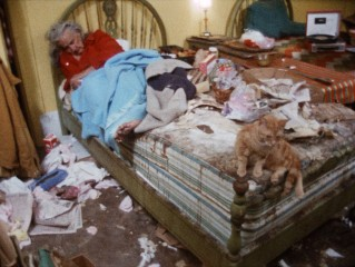 Grey Gardens is a home to cats, people, and no shortage of junk.
