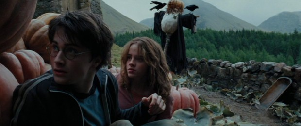 Using a time-turner, Harry (Daniel Radcliffe) and Hermione (Emma Watson) go back to the not-so-distant past to assist their recent selves and others.