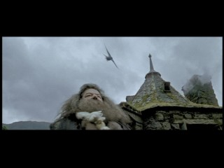 "Hagrid (Robbie Coltrane) gets bothered by a bird in this short, meaningless deleted scene found in ""Trelawney's Crystal Ball."""
