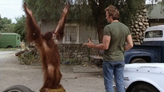 "The 1978 comedy ""Every Which Way But Loose"", co-starring an orangutan named Clyde, is one of the older films given brief notice in Richard Schickel's documentary ""The Eastwood Factor."""